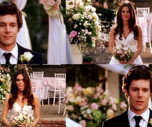 the oc, adam brody, and seth cohen image