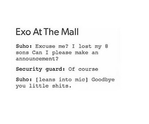 exo, tumblr, and funny image