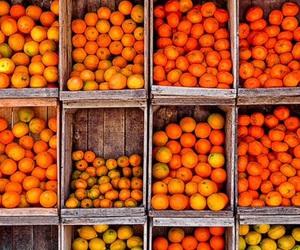 FRUiTS, orange, and summer image