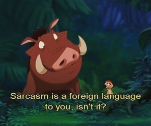 sarcasm, disney, and lion king image