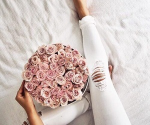 pink, cute, and roses image