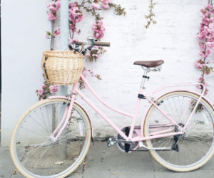 bike and pink image