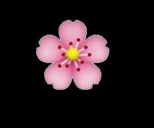 overlay, flower, and emoji image