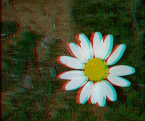 flowers and glitch image