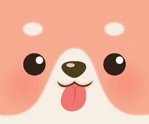 adorable, pomeranian, and wallpapers image