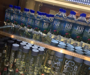 fiji, water, and voss image