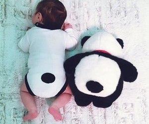 baby, panda, and kids image