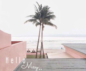 pink, beach, and pastel image
