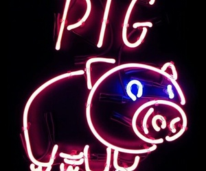 neon, pig, and pink image