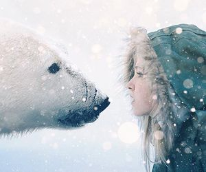 digital art, photoshop, and Polar Bear image