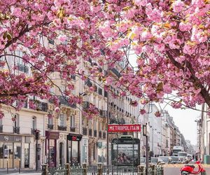travel, france, and spring image