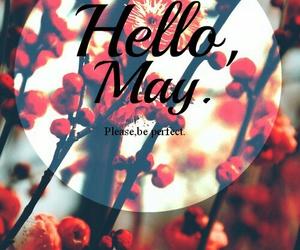 may, hello may, and spring image