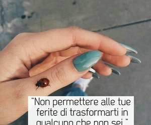 coccinella, frasi, and tumblr image