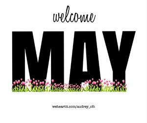 beautiful, flowers, and hello image