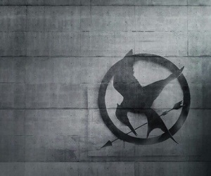 mockingjay, the hunger games, and district 13 image