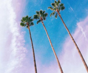 tropical and vsco image