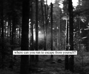 escape, quote, and black and white image