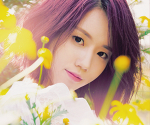 aesthetic, flowers, and korean image