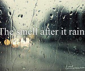 rain, quote, and smell image
