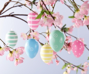decorations, easter, and eggs image