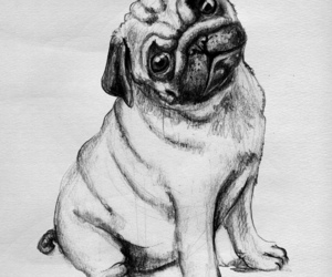 dog, draw, and cute image