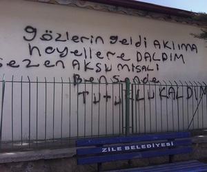 sezen aksu, sözler, and duvar yazıları image