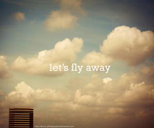 fly, sky, and away image