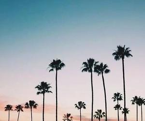 summer, beach, and california image