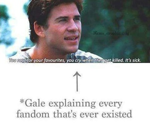 fandom, gale, and the hunger games image