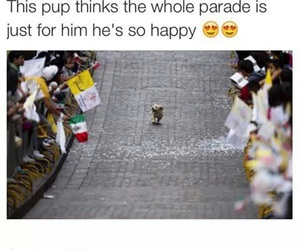 dog, parade, and puppy image