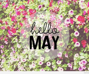 hello, may, and flovers image