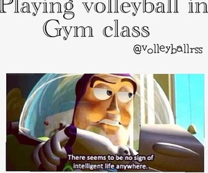 gym, sport, and volleyball image
