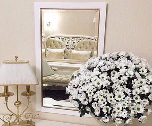 flowers, lamp, and mirror image