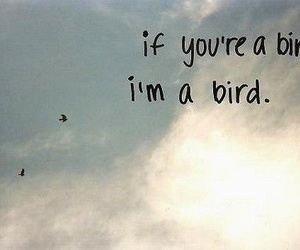 bird, the notebook, and quote image