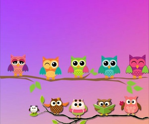 owls, wallpaper, and cute image