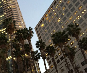 city, light, and palm trees image