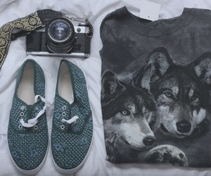 wolf, camera, and shoes image