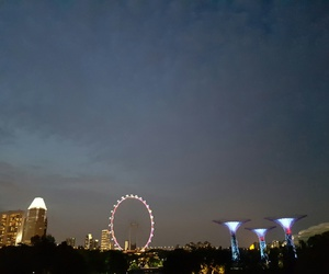 scenery, night, and singapore flyer image