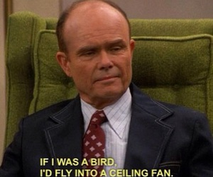 that 70s show, funny, and bird image
