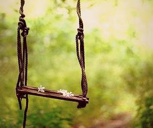 swing, nature, and flowers image