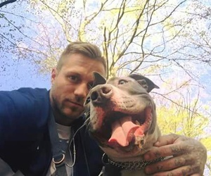 bad, pitbull, and dog image