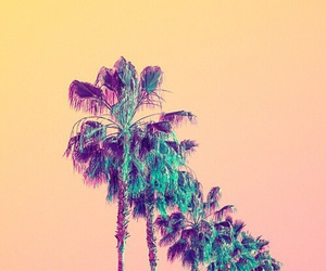 wallpaper, background, and summer image