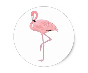 favors, flamingo, and party image