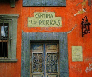 colors, door, and orange image