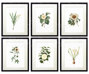 etsy, white flowers, and vintage flowers image