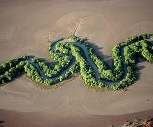 Yann Arthus-Bertrand image