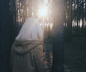 blonde, brown, and forest image