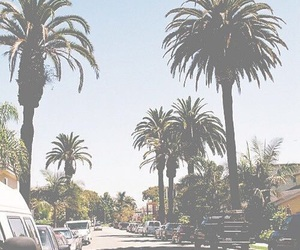 car, palm trees, and street image