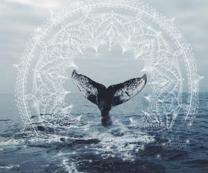 art, mandala, and ocean image