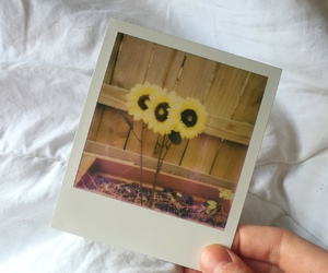 memories, photograph, and love image